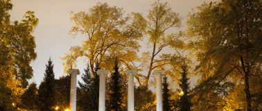 UW The Columns in Sylvan Grove.